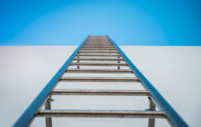 Fulfilment Ladder